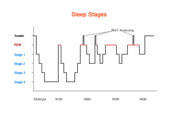 Portable Night Owls: A Deep Dive into How Sleep Trackers Work
